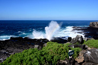 Blow Hole, Espanola Island