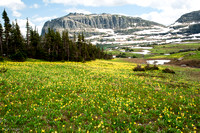 Hidden Lake Trail Above Logan Pass