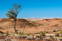 At the Breakaways near Coober Pedy