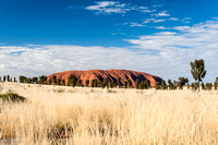 Uluru, desert oaks, and grass