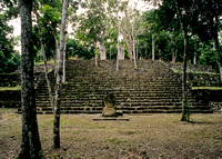 Calakmul - Structure 6, looking up