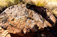 "Petroglyph created by pounding and ""pecking"" at the flat rock"